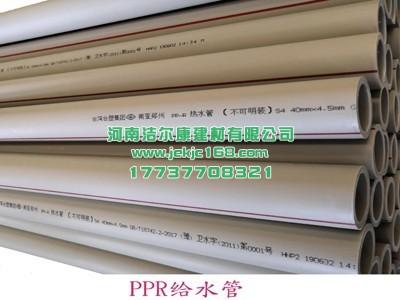南亚PPR管1
